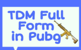 TDM Full Form in Pubg